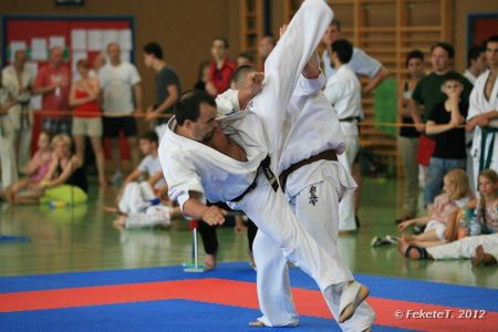 Sensei Fris Ferenc akcióban a a Bécs Open-en