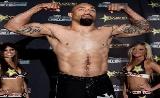 UFC 154: Johnson vs Schaub