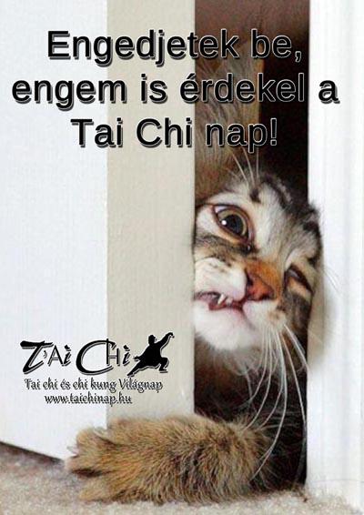 Tai Chi és Chi Kung Világnap