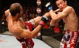 UFC  169: Aldo vs Lamas