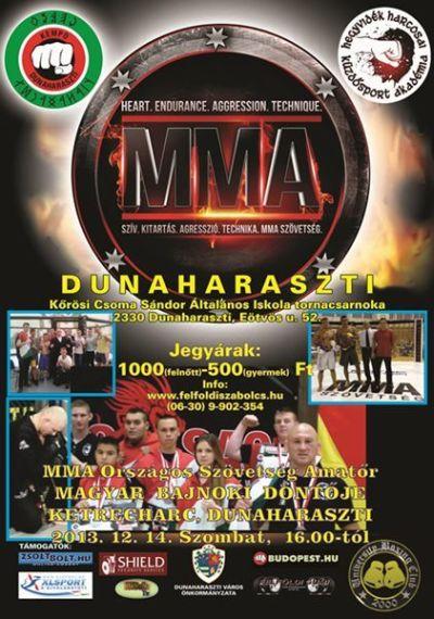 MMA döntő Dunaharasztiban, 2013