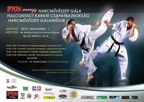 Ippon - energy Harcművészeti Gála a Sport TV műsorán