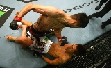 UFC 171: Condit vs Woodley