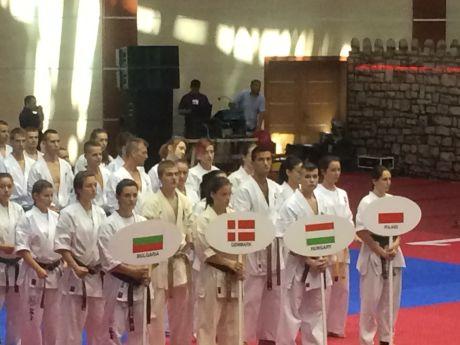 Shinkyokushin Európa-bajnokság, 2014 - Baku