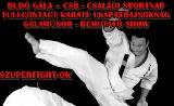 Karate hétvége Budaörsön!