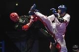 Mórádi Zsolt sportdiplomáciai sikere