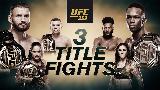 Champion Vs. Champion: UFC 259 hétvégén!