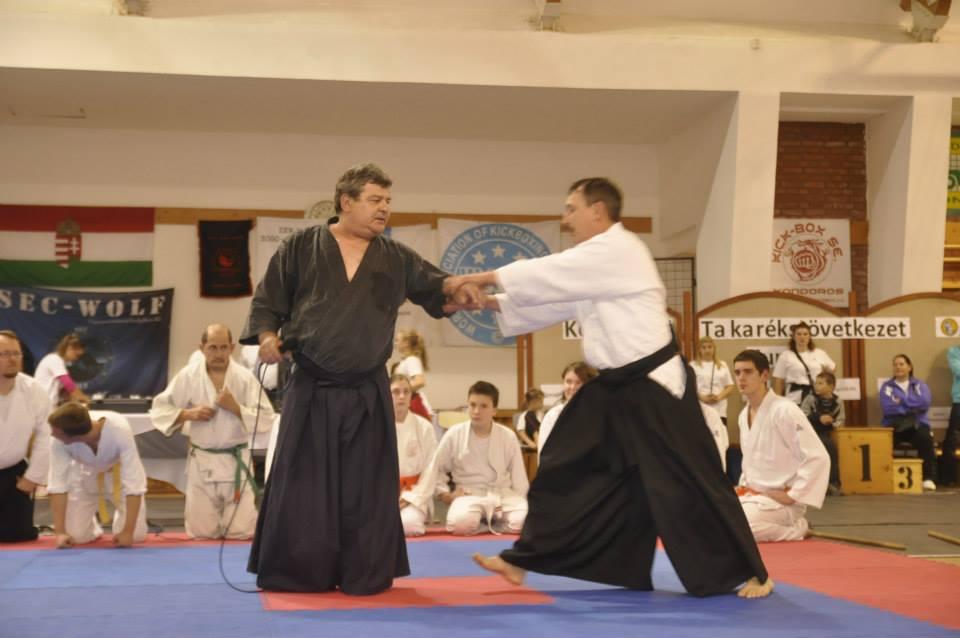 A BUDO gála, aikido: Dobóvári Erik és Balázs Sándor mesterek