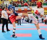 Eredményes kezdés a kick-boksz eb-n