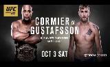UFC 192 mérlegelés