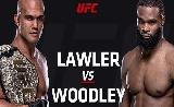 UFC 201 mérlegelés