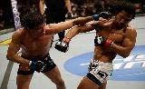 UFC 188: Alvarez vs Melendez