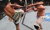 UFC 196: Werdum vs Miocic